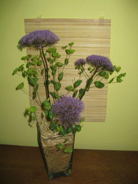 Quand les fleurs destinées au deuxième plan arrive dans le premier plan.jpg